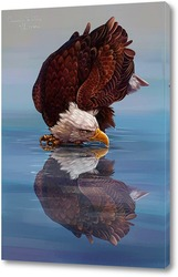 Орел и его отражение
