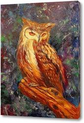 Постер Мудрая сова