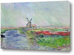 Картина Поле тюльпанов в Голландии, 1886