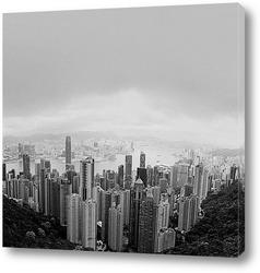 Hong-10010913