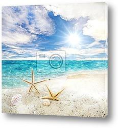 Постер Хорошее путешествие: Лето у моря