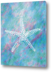 Постер Starfish051