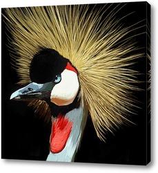 Картина Венценосный журавль