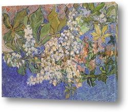 Botticelli-4
