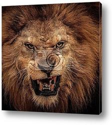 Постер Злой лев