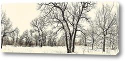 Постер зима 2