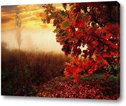 Картина закат в тумане