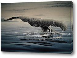 Картина Whale001