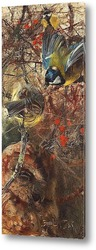 Постер Большие титы и птенцы