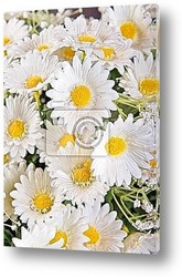 Bouquet de fleurs de frangipanier