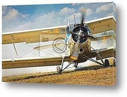 Постер Old airplane ready to start