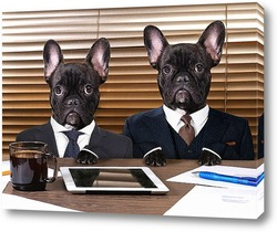 Собаки в черном