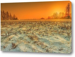 Постер Туман над полями