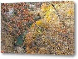 Постер Окрестность Сочи. Ущелье горной реки Хоста