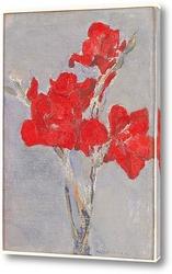 Картина Красный гладиолус