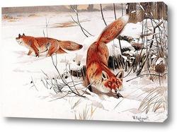 Картина лисы в снегу