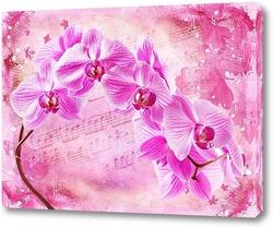 Постер Цветущая орхидея