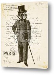 Картина Сова человек в Париже