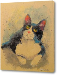 Постер Котик