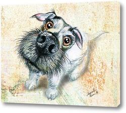 Постер Любовь собаки