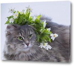 Постер Весняночка