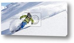 Постер Лыжник