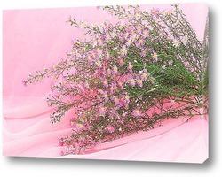 """""""Розовые хризантемы"""""""