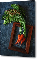 Постер Свежая морковка. Портрет