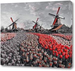 Постер Пейзаж с тюльпанами