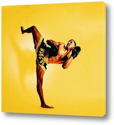 Постер Karate001