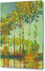 Картина Клод Моне. Тополя на солнце ( копия)