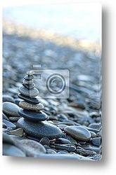 image de coquillages posГ©s sur le sable Г la plage et galet