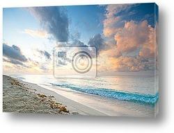 Постер Caribbean beach in Playacar of Mexico