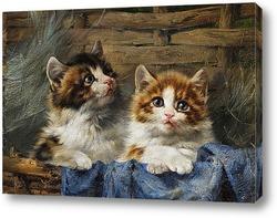 Двое котят в корзине с синей тканью