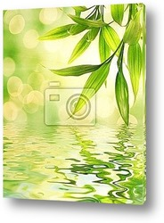 Постер Bamboo leaves reflected in rendered water