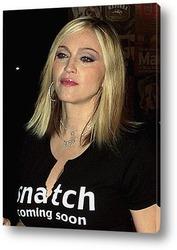 Постер Madonna_34