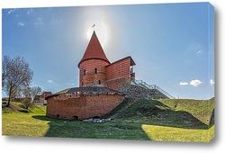 Постер Каунасский замок
