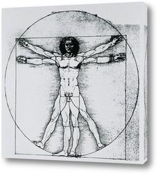 Leonardo da Vinci-20