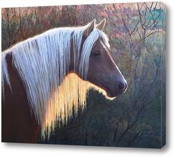 Картина Этюд головы лошади