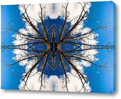 Бамбуковый паук