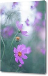 Цветущий лён голубой на розовом фоне. Голубые цветы полевые