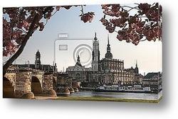 Постер Dresden in Blossom