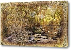 Постер Карта и лес