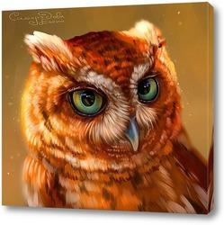 Постер Рыжая сова