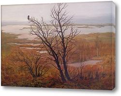 Картина Просторы болот