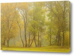 Постер Осень туманная