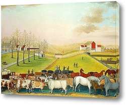 Постер Ферма Корнелл, 1848