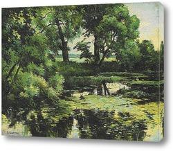 Постер Заросший пруд