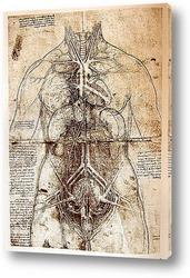 Картина Leonardo da Vinci-39