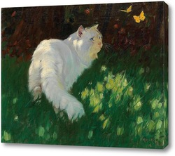 Постер Белая кошка и бабочки